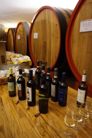 Tenuta Santo Pietro: Lovely Wine Tasting