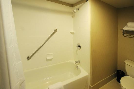 BEST WESTERN PLUS Denver International Airport Inn & Suites: Bathroom