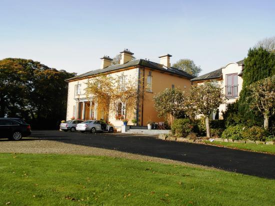 Ballingarry, Irlanda: Gounds