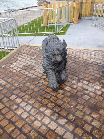 Hairy Maclary & Friends Tauranga Waterfront Sculpture