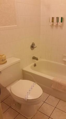 Union Square Plaza Hotel: Banheiro