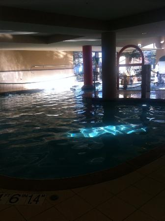 Hampton Inn and Suites Madison West: Pool Area