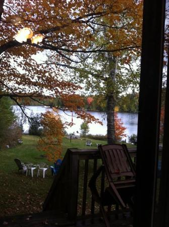 Beauview Cottage Resort: View from the deck