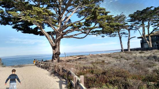 Monterey Bay Lodge: Beach across the street