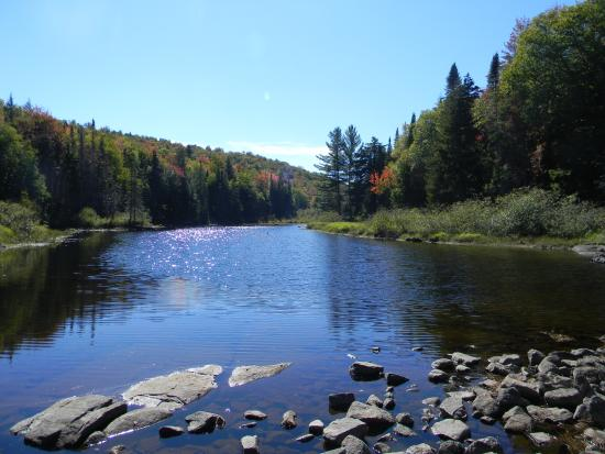 Long Lake, NY: upstream from the falls in late September