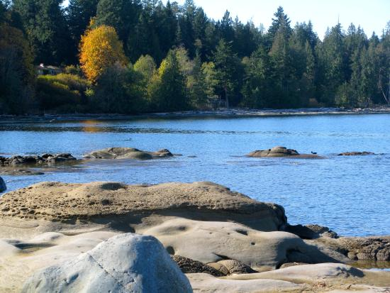Hornby Island, แคนาดา: lovely rocks to walk on