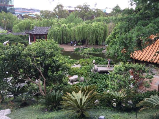 The garden - Picture of Chinese Garden of Friendship, Sydney ...