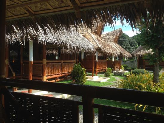 Pura Vida Beach Dive Resort Vue Sur Les Bungalows