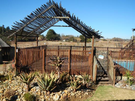 เบโนนี, แอฟริกาใต้: Pool area