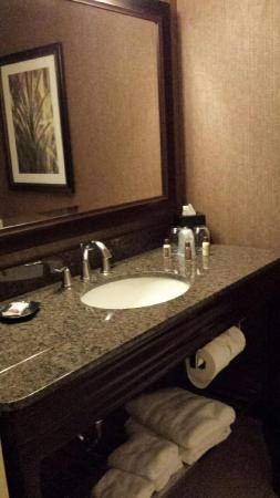Sheraton Springfield at Monarch Place: Very nice/clean