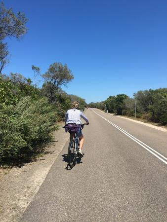 Manly Bike Tours and Bike Hire : North End Cruise