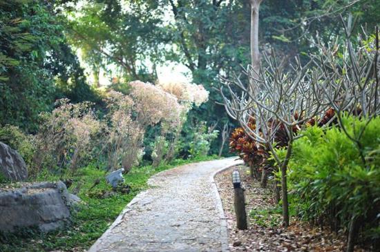 Lilawalai Resort : ทางเดิน