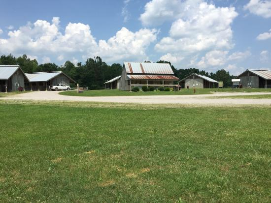 Bandy Creek Stables
