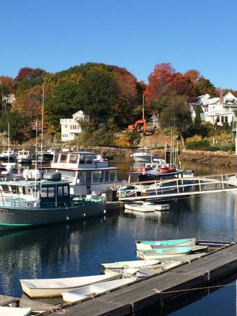 Perkins Cove: Fall color at Perkin's Cove