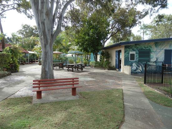 Tripadvisor Bribie Island Accommodation