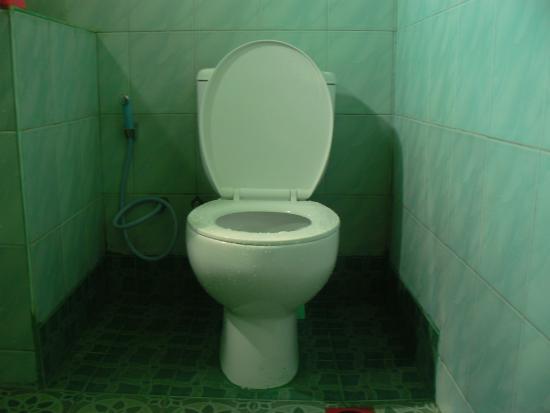 Kawah Ijen Guest House: edy mickey,owner +6285204856980