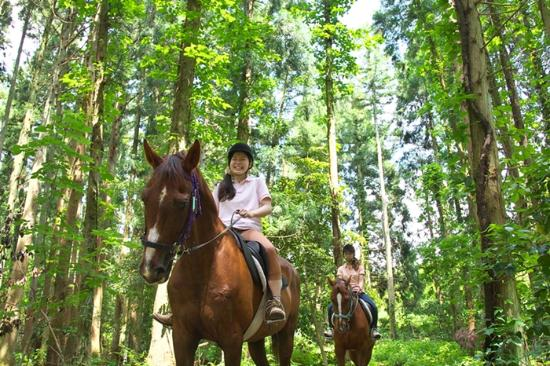 Daisen Riding Center: 森の中でトレッキングも