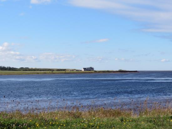 Malpeque Bay