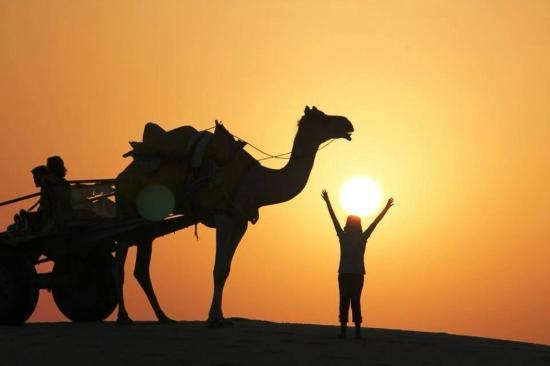 Karan Desert Safari