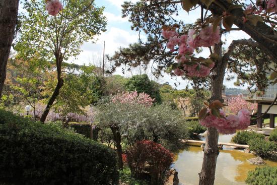 Il giardino giapponese foto di giardino giapponese roma