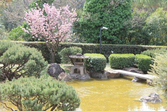 laghetto picture of giardino giapponese rome tripadvisor