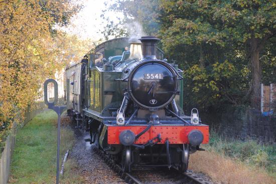 dean-forest-railway.jpg