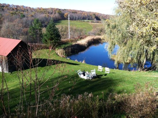 The Willow Tree Inn Bed & Breakfast: View of the Duck Pond