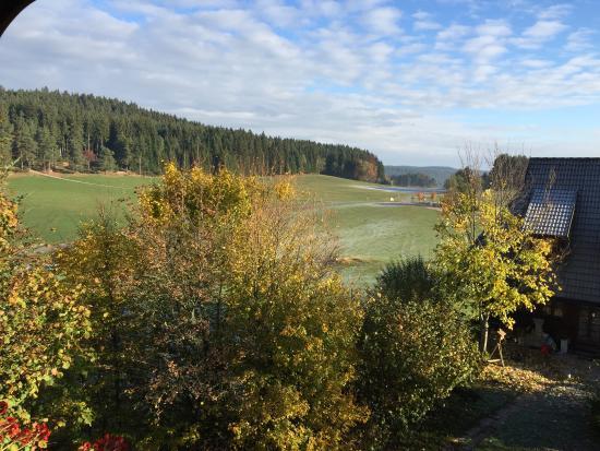 Gasthaus Zur Staude: Great view of the Black Forest