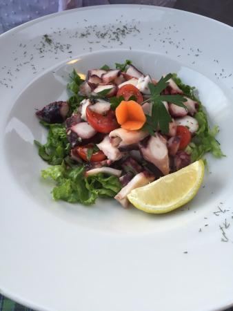 Mediterranean Restaurant Majestic: ottima cenetta