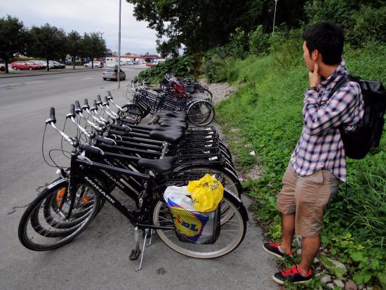 Gotlands Cykeluthyrning: 自転車は十分にありました