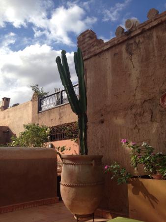 Riad Palmier : Magnifique et dépaysant
