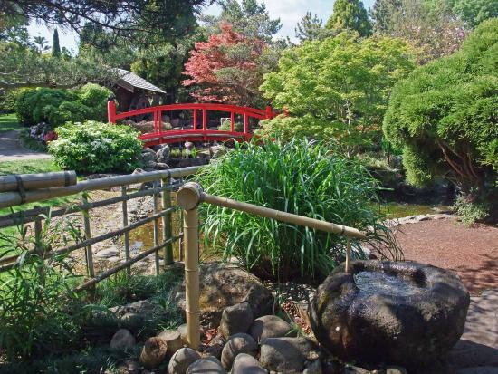 Fernary picture of royal tasmanian botanical gardens for Garden design hobart