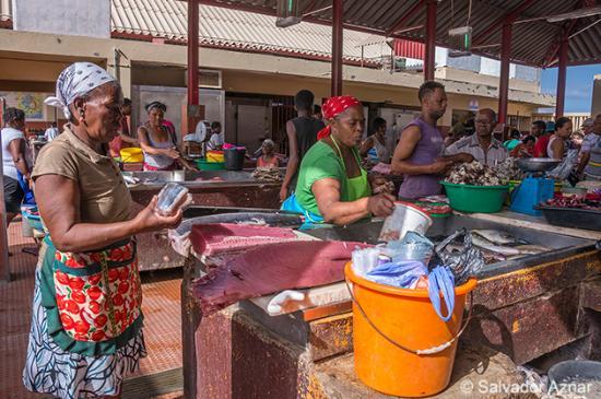 Mercado de Peixe: Puestos de venta