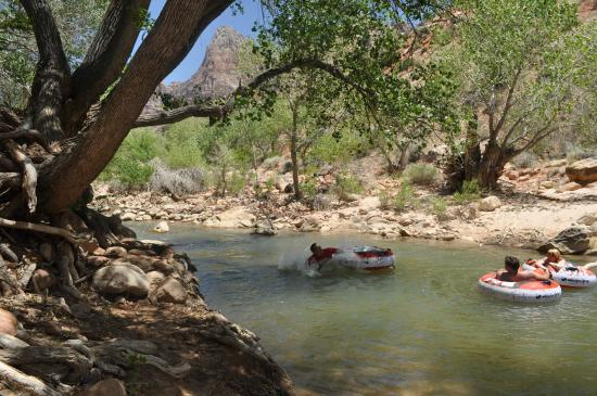Zion Canyon Bed and Breakfast: Our property ends along the Virgin River.