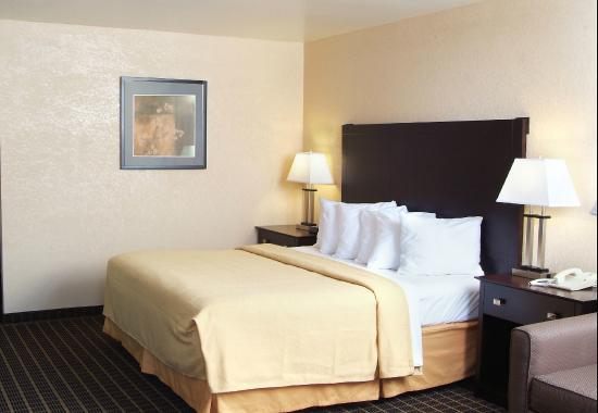 Quality Inn & Suites: 1 King Bed Room