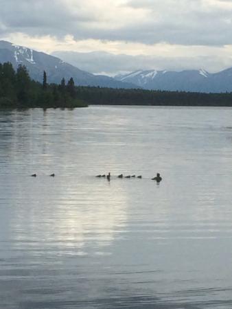 Moose Pass, อลาสกา: lake