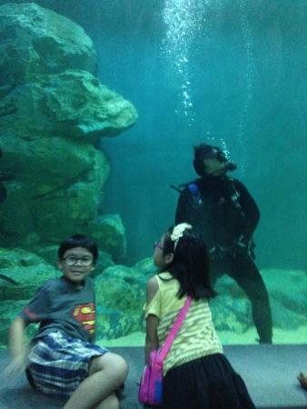 Bueng Chawak Aquarium : Bueng Chawak Chalermphrakiat ...