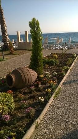 Ozdere, Turcja: Хотелось бы больше залени на территории