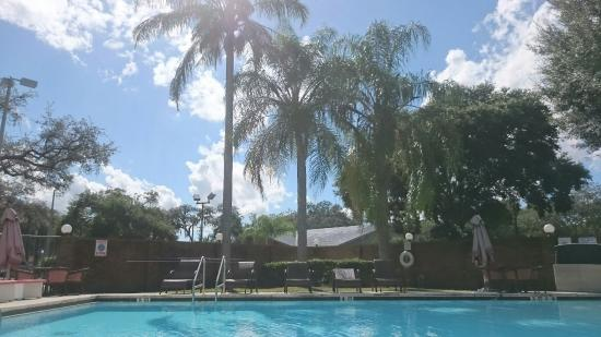Ramada Temple Terrace/Tampa North: Pool area