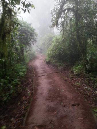 Kilimanjaro National Park, Tanzania: Mount Kilimanjaro