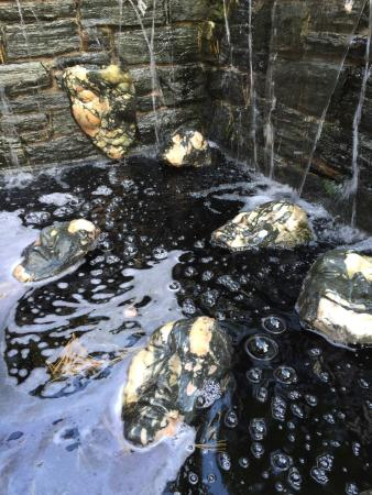 Wayne, PA: Stone sculpted floating faces...mysterious