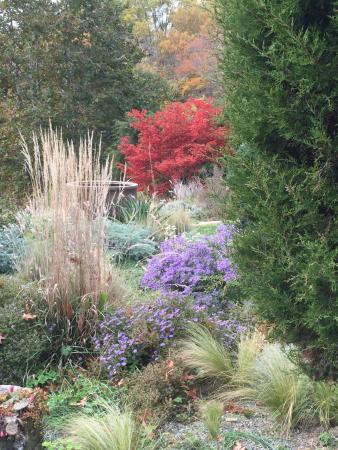 Wayne, Pensylwania: Autumn color palatte