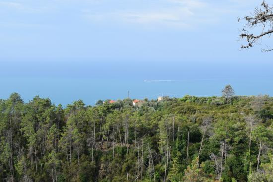 Due Gemelli : View from room on lowest guest level