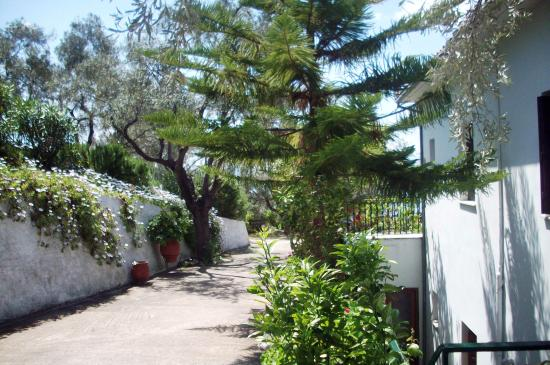 Kalamos, Griechenland: The Garden on May