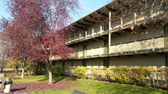 Parkwood Inn: Fall In Anchorage