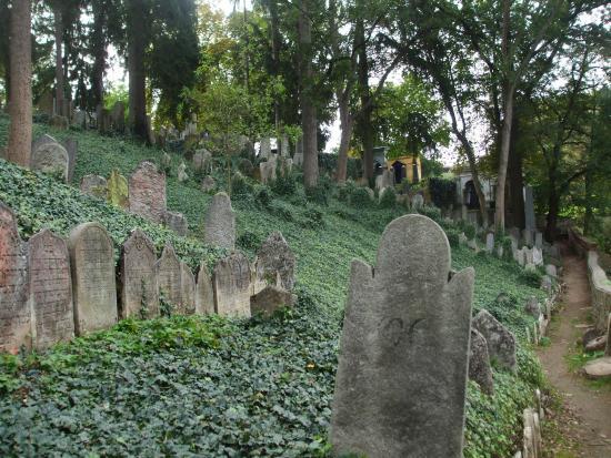 Moravia, Republik Ceko: certaines pierres tombeles identifiées selon la descendance