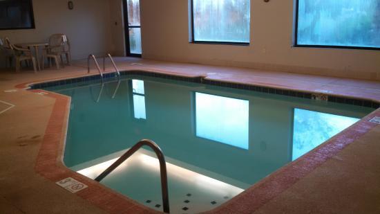 Comfort Suites Dayton: pool