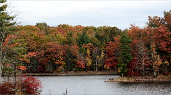 Essex, CT: Oct, 2015 foliage