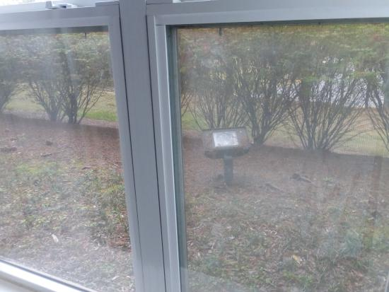 Homewood Suites Birmingham South Inverness: Exterior flood light aimed right at bedroom window