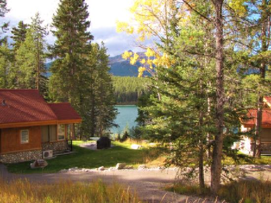 Patricia Lake Bungalows Resort: view from non lake front Grove cabin